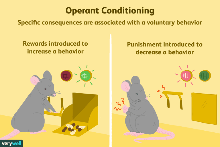 Image result for Operant Conditioning