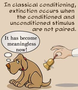 Image result for classical conditioning extinction